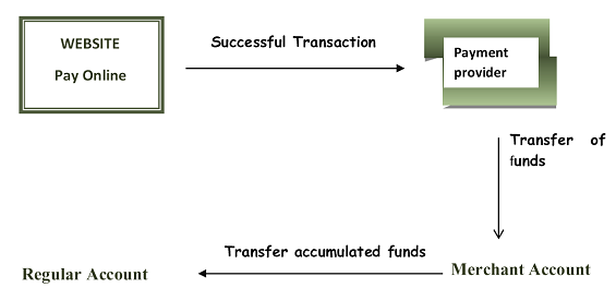 Payment Gateway Functioning