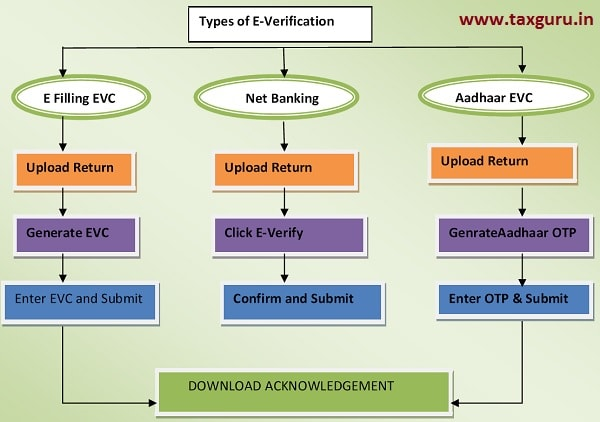 Modes of E-Verification