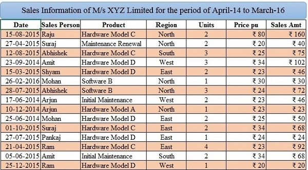 sales-information-of-ms-xyz-limited