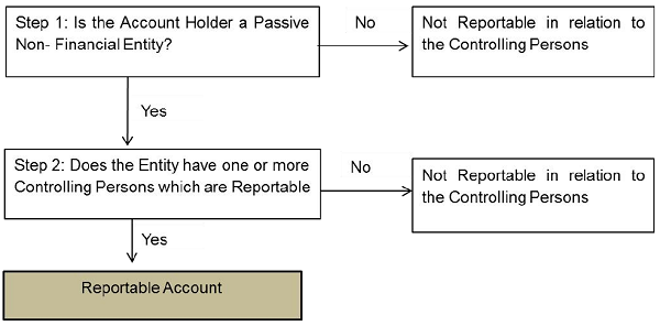 figure-steps-for-other-reportable-account