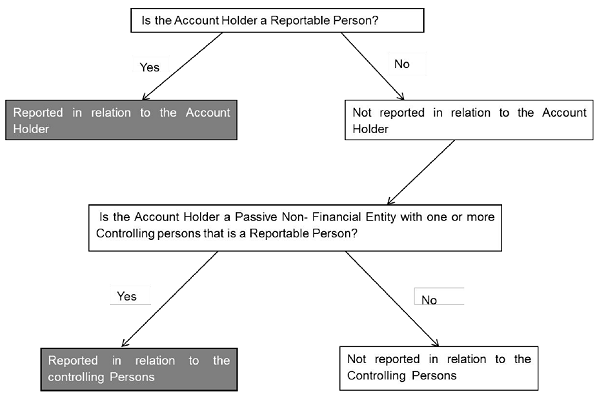 is-the-account-holder-a-reportable-person
