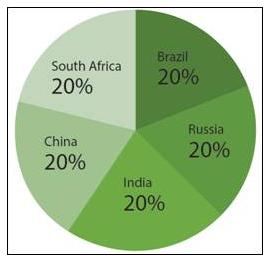 Figure 2 Shareholding Structure of New Development Bank