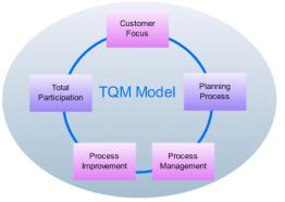 QM Model