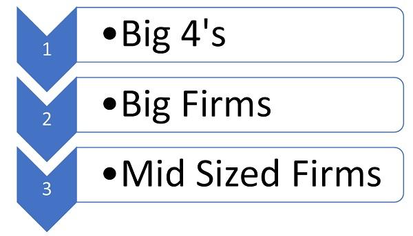 Big CA Firms