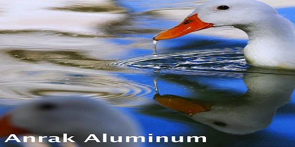 Anrak Aluminum Ltd.