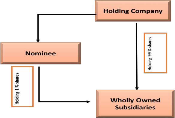 Concept of Wholly Owned Subsidiary, Registered Owner, Beneficial Owner under section 89 of Comapnies act Image 1