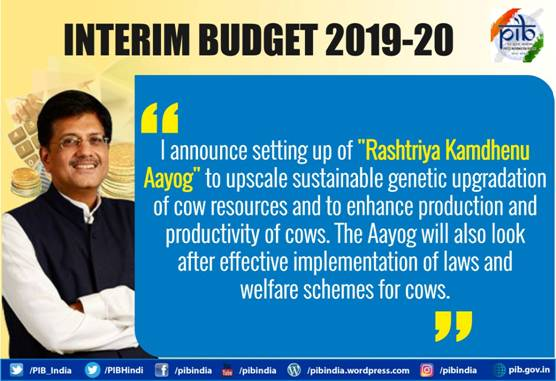Interim Budget 2019-20 Image 2