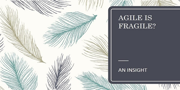 Agile is Fragile- An Insight