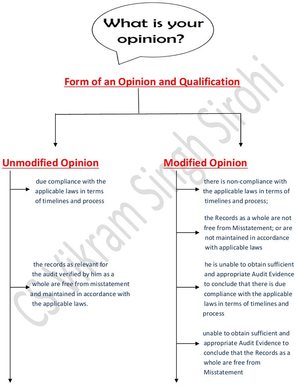 Form of an Opinion and Qualification