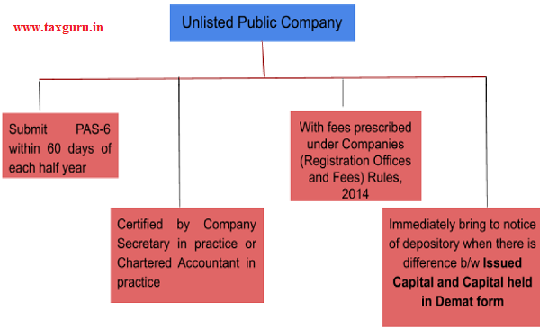 unlisted Public Company