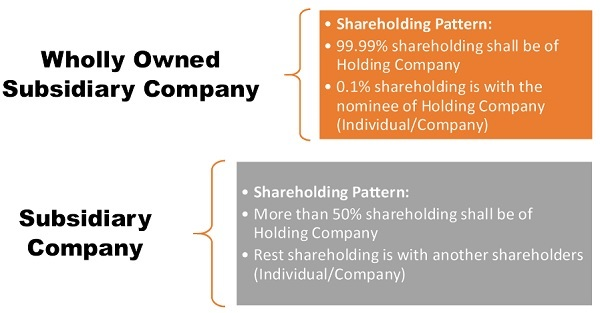 TYPES OF SUBSIDIARY COMPANY IN INDIA