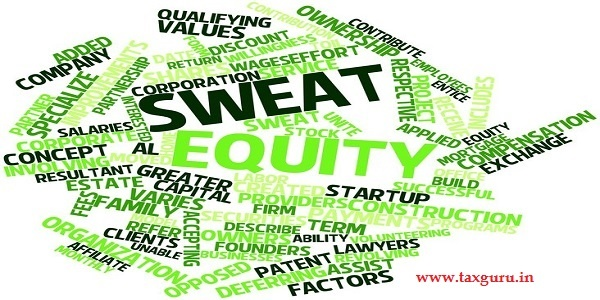 abstract word cloud for sweat equity with related tags and terms