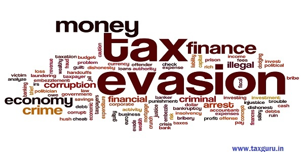 Tax evasion word cloud
