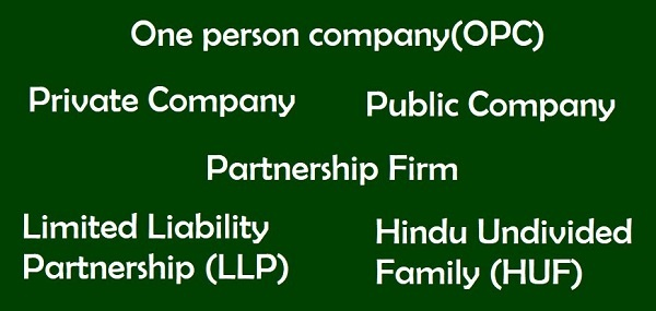 Types of Entities for Doing Business