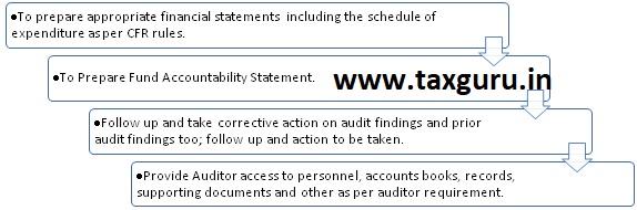 CFR Audit, Auditee responsibilities