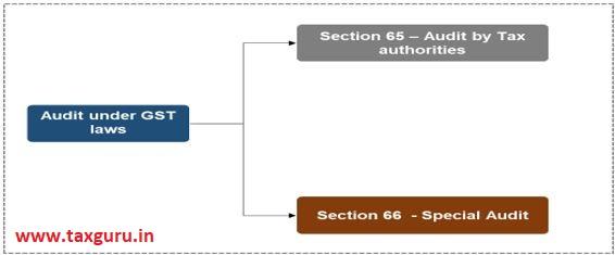 Audit under GST Laws