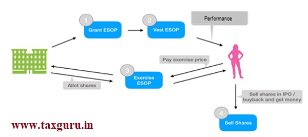Life cycle of ESOP