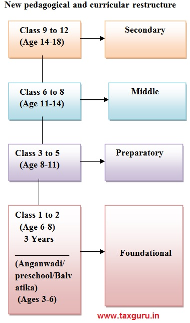 New pedagogical and curricular restructure