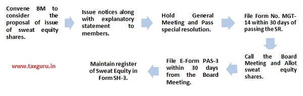 the procedure for issuance of sweat equity shares