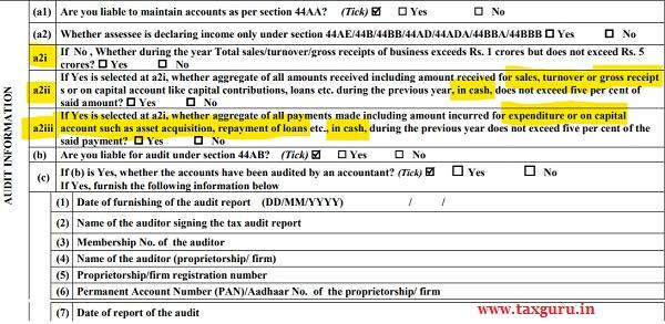 Audit Information