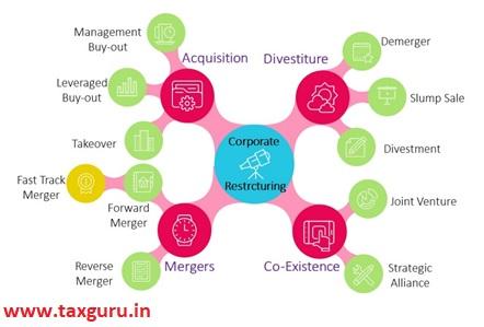 Popular Strategies & Success Stories