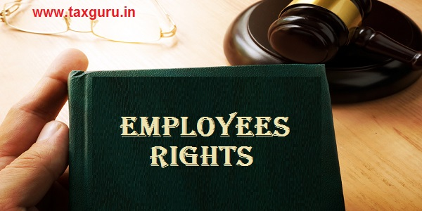 Employment Rights on an office table