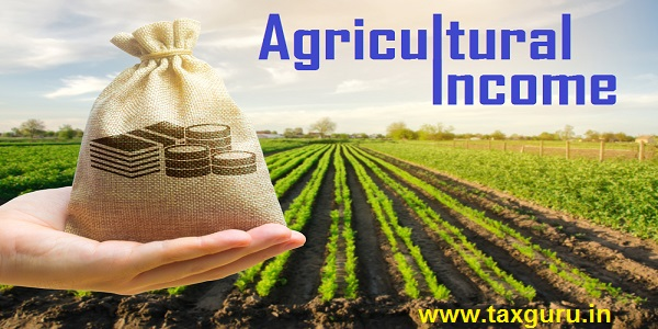 Farmer holding a money bag on the background of carrot plantations. Agricultural startups. Lending and subsidizing farmers. Investment and profit.