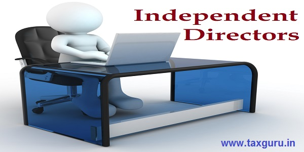 Independent Directors - 3d man, person to an office and a laptop