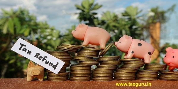 Miniature pigs on rolls ladder of gold coins and wood piggy with tax refund word