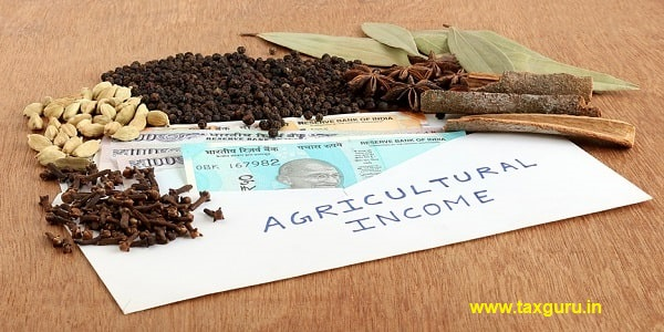 Agricultural Income In India