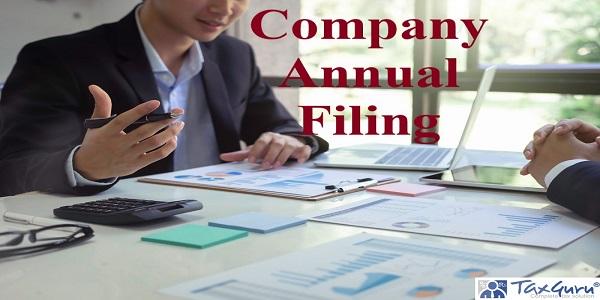 Company Annual Filing