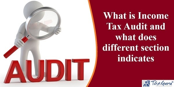 What is Income Tax Audit and what does different section indicates