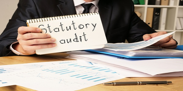 Statutory audit is shown on the conceptual photo